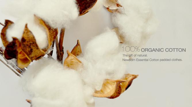 有機棉的好處,棉花圖片,有機棉,sisso